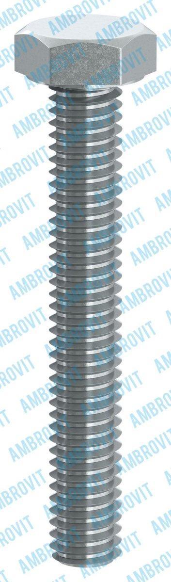 Ambrovit VITE METRICA TE SW 13 8X40 ZINC. Cr3 CF. 200 30931